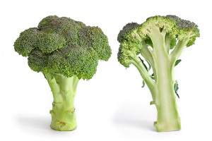 """Broccoli and cross section edit"" by Fir0002 - Own work. Licensed under GFDL 1.2 via Wikimedia Commons."